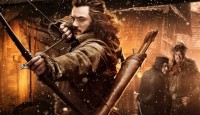 The Hobbit The Desolation of Smaug Banners