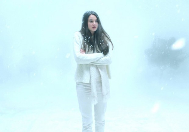 White Bird in a Blizzard Image 06