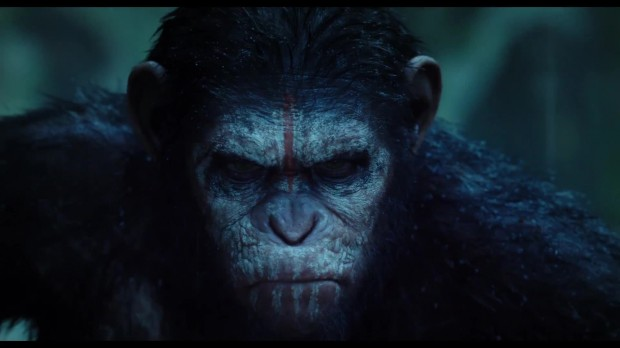 Dawn Of The Planet Of The Apes Photo - Caesar