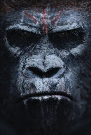 Dawn of the Planet of the Apes Poster 02