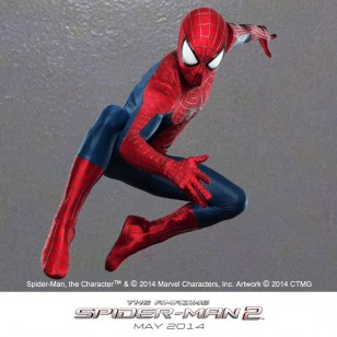 THE AMAZING SPIDER-MAN 2 Image 03